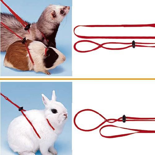 Как сделать поводок для кролика своими руками в домашних условиях 66